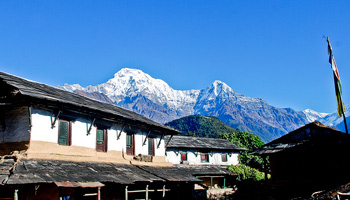 Dhampus-Ghandruk Trekking-8 Days