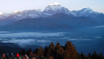 Ghorepani poon Hill Trek-10 Days